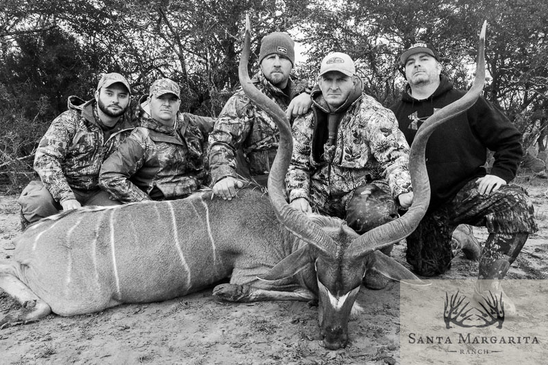 Exotics Hunts in Texas